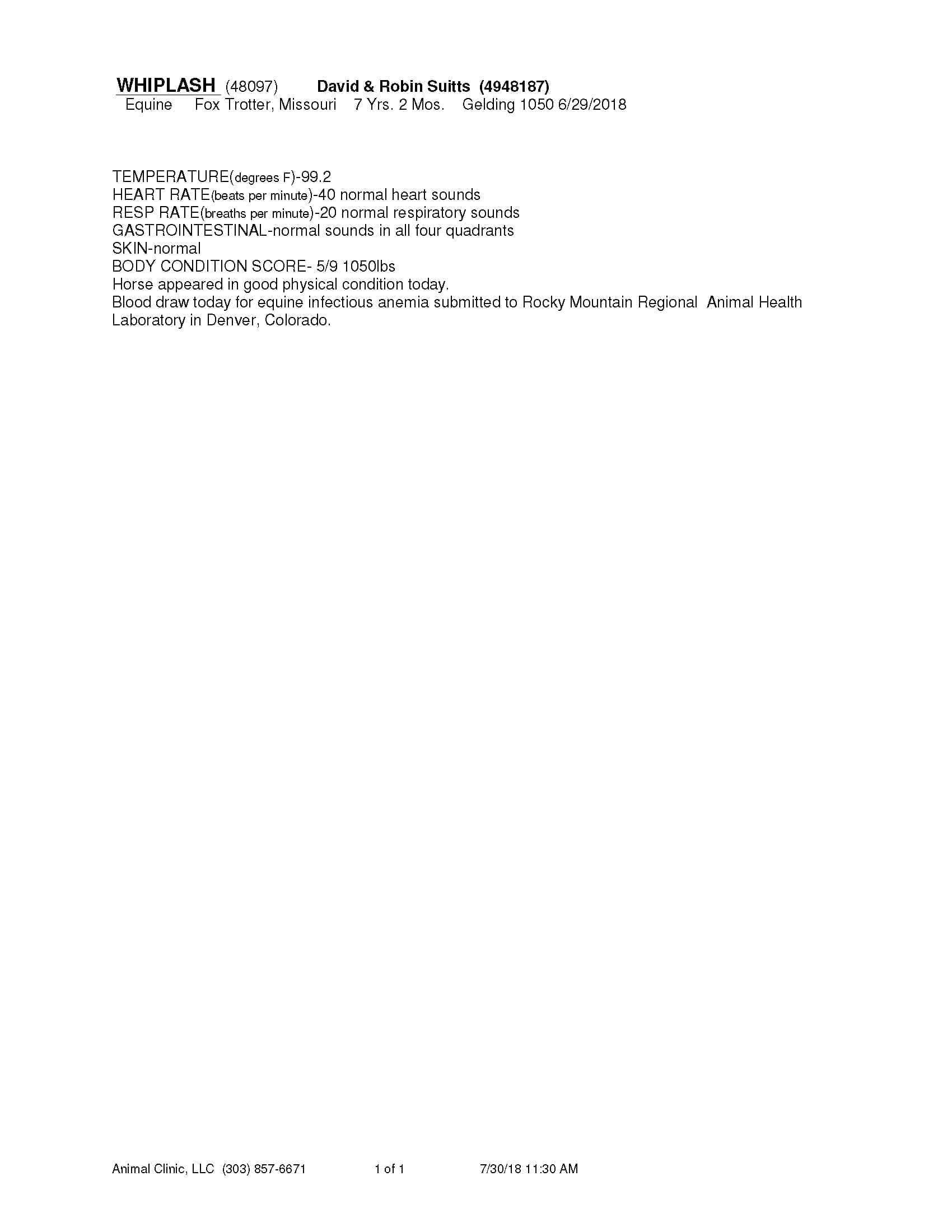 WHIPLASH-48097